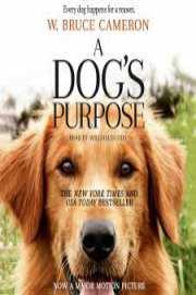 A Dogs Purpose 2017 Dvdrip Avc Free Movie Download Torrent Mango Strip Club Nyc